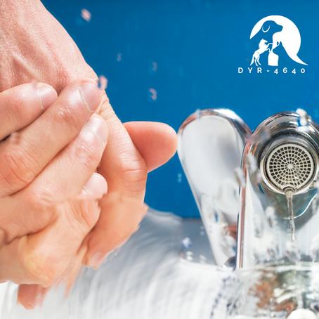 I dag er det den internasjonale håndhygienedagen!