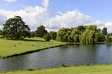 trees and lake in Leeds castle park, Mai
