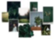 green mood board