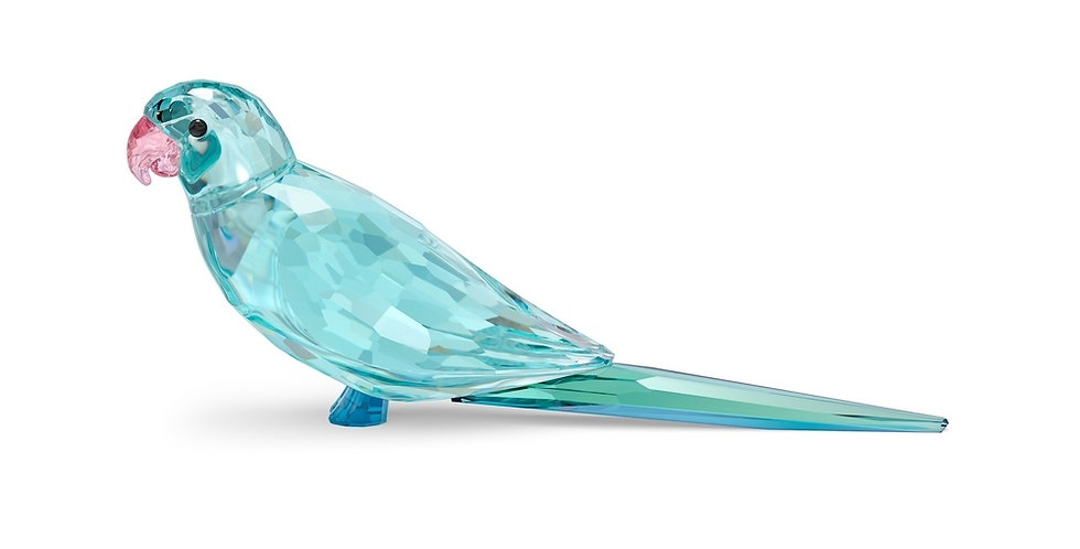 Swarovski figurer Jungle Beats Blue Parakeet Paco
