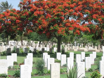 CairoWarMemorialCemetery2006.jpg