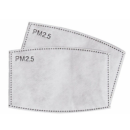 PM2.5 Filters for Reusable Face Mask x 10