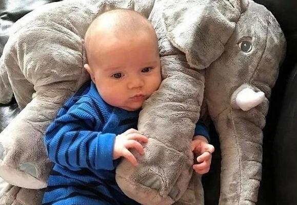Elephant and Baby.jpg