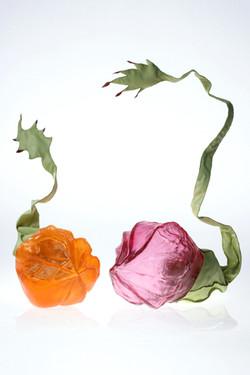 Bulbes: Bouton folâtre du printemps