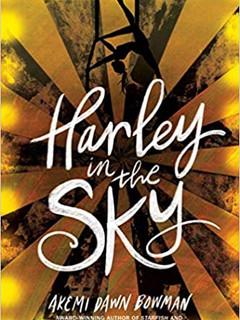 harley in the sky.jpg