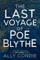 last voyage of poe.jpeg