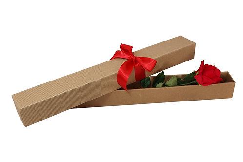 Samoskladná na růži 60 x 6 x 6 cm