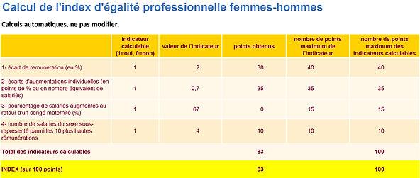 Indexe égalité professionnel femmes homm