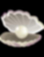 Lois  Petren - oyster-01.png