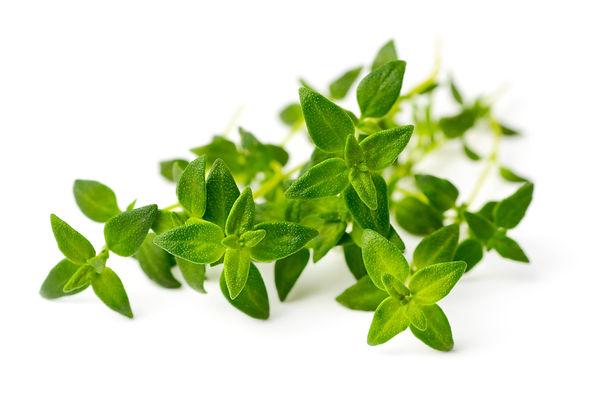 ariya priyasantha - bigstock-Fresh-Herb-