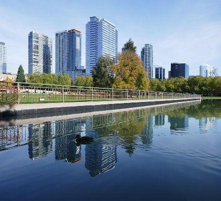 bellevue-s-growing-skyline.jpg