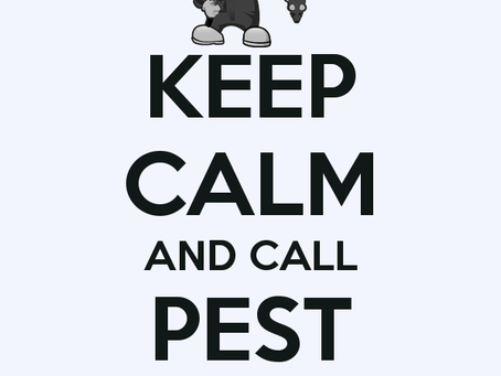 5 Signs That You Need To Call A Pest Exterminator