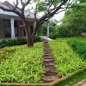 Art of Living, Bengaluru