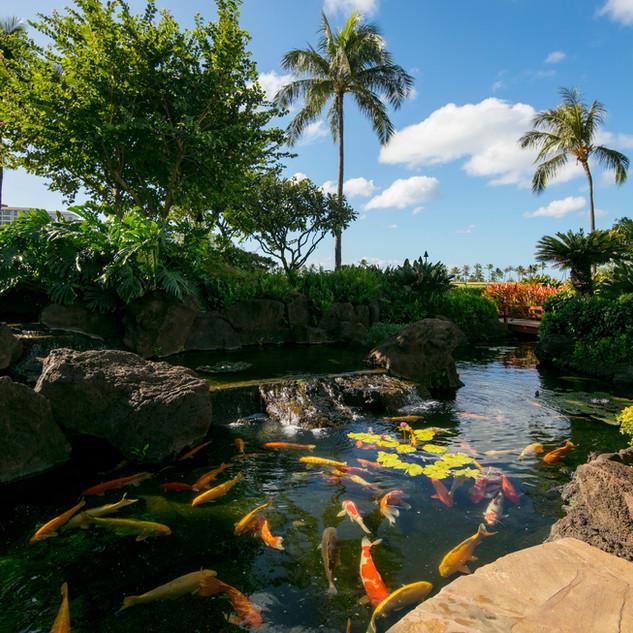 Ocean Villa O-403-23.jpg