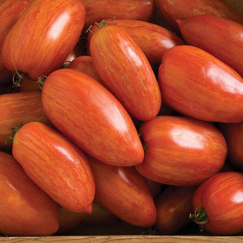 Speckled Roman Plum Tomatoes