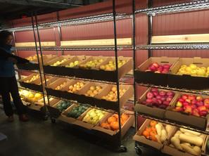 weymouth farms indoor market.JPG