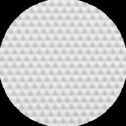 S21 Profile