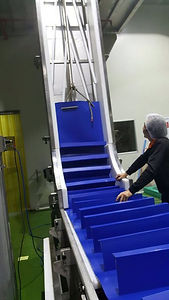Positive Drive Food Belt Installed on a Conveyor with 1 Inch Pitch