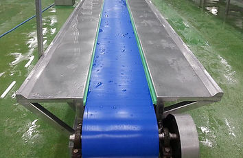 Hygienic Food Conveyor Belt after Cleaning Installed on a Conveyor System