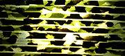 セルロイドメガネRUISMで使用する黒と緑色マーブルのセルロイド生地