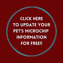 Click Here To Update Your Pet's Microchi