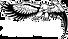 ernie-ball-eagle-white.png