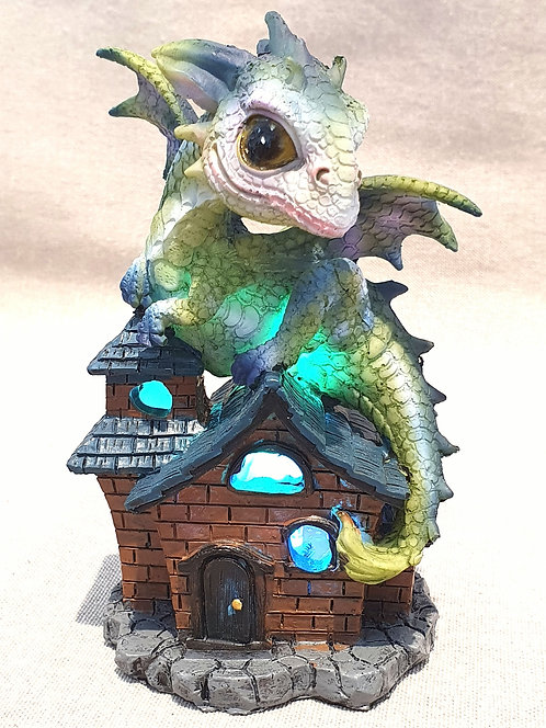 Dragon LED light up with house