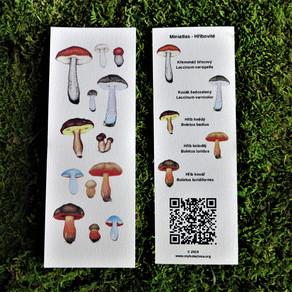 Miniatlas - kolekce Hřibovité