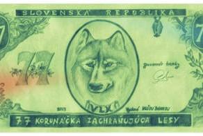 O VLCÍCH Z VÝCHODNÍHO SLOVENSKA