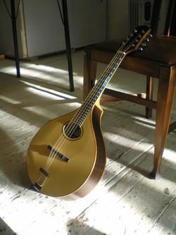 mandola 210