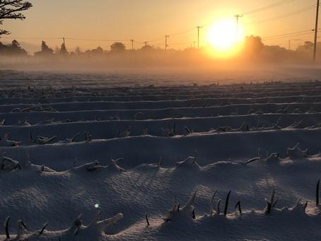 綺麗な雪景色とだけは言ってられな〜い
