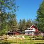 homestead-summer-2020.jpg