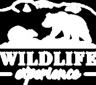 Logotyp_vit.png