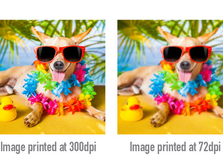 Print Crisp, Not Blurry