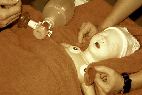 Notfall, Neugeborenenversorgung für Hebammen / 04.09.2019