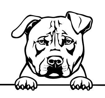 Logo-Hund_edited.jpg