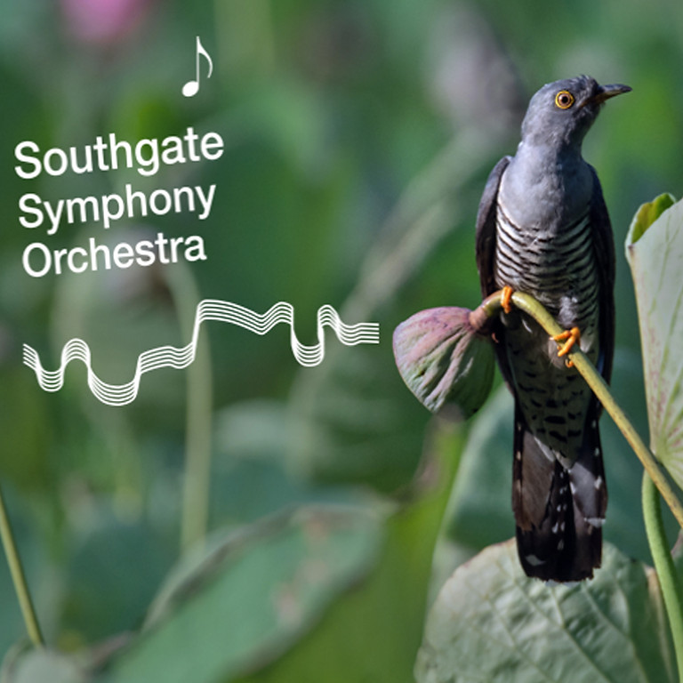 Southgate Symphony Orchestra : Reprise