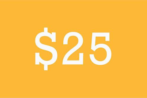 $25 Building Bridges Donation