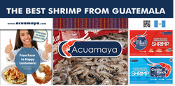 The best shrimp from Guatemala
