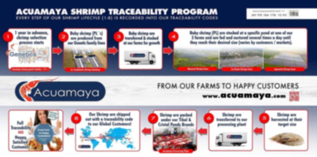 acuamaya shrimp traceability program (sm