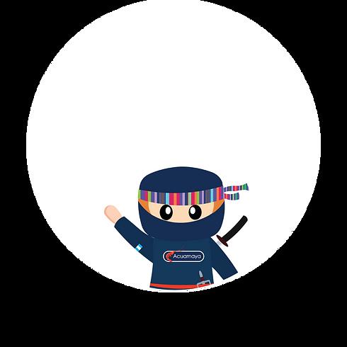 Shrimp Ninja Tips (2).png
