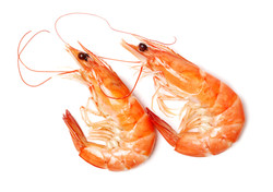 Naturally Darker Shrimp