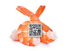 QR Code Acuamaya Shrimp 502 ES.png