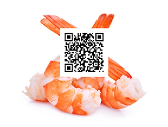 Traceable Shrimp.png