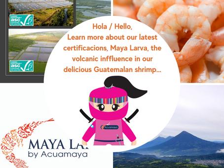Acuamaya Shrimp Ninja News - Jan 2021