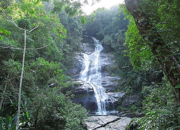 7 - Tijuca Rain Forest / Floresta da Tijuca