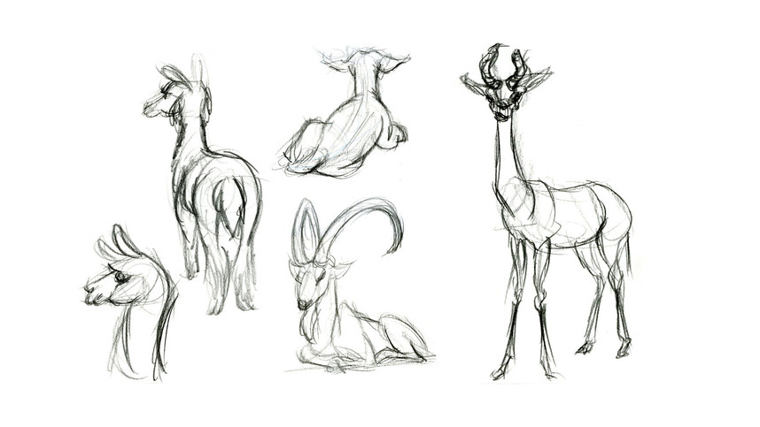 animaldrawing1.jpg
