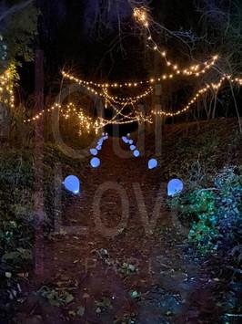 demande en mariage dans les bois