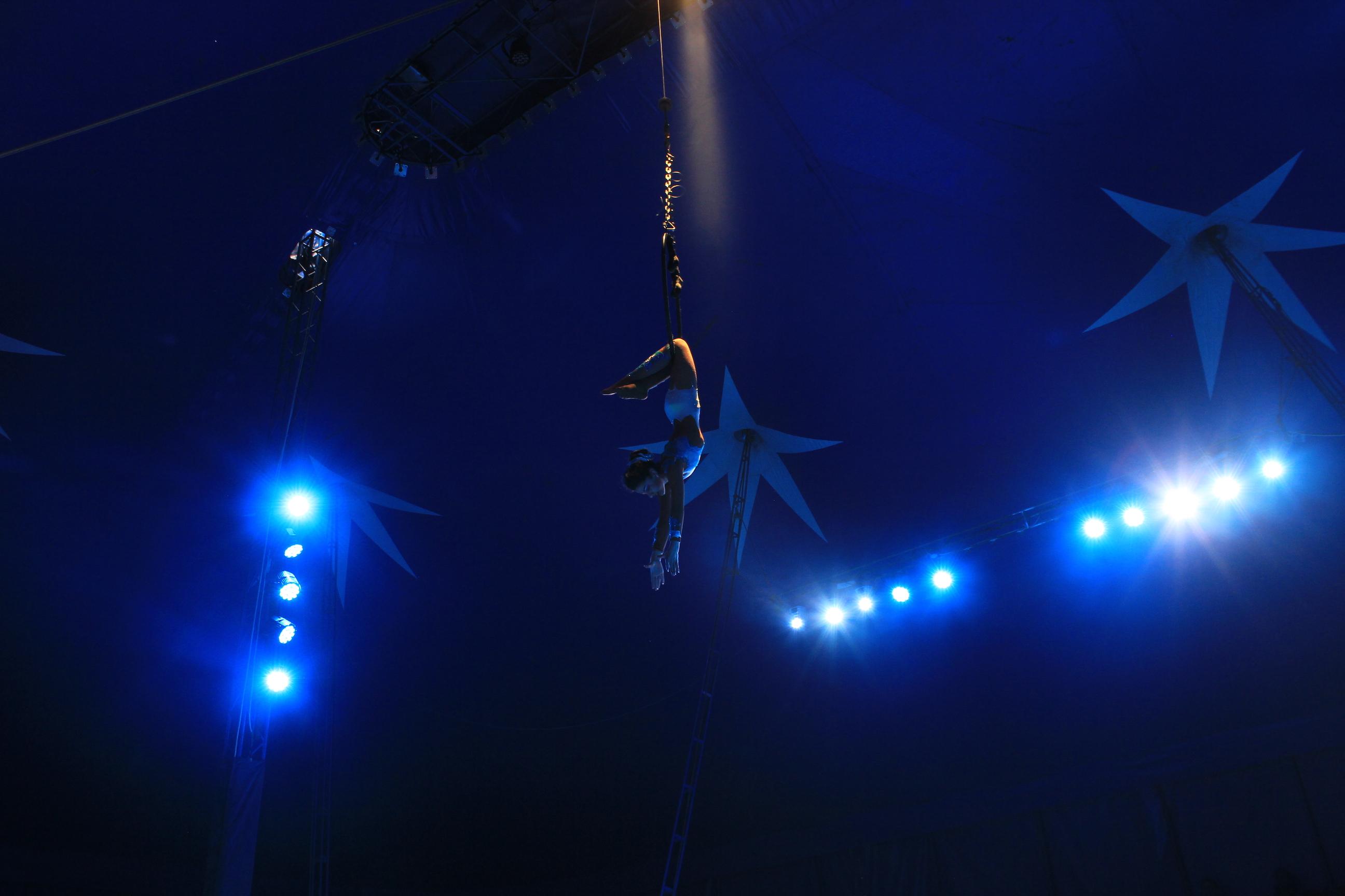 Visuels pour le cirque Sebastien Zavatta