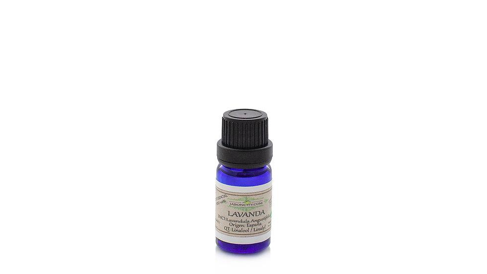 Lavender essential oil (10 ml)